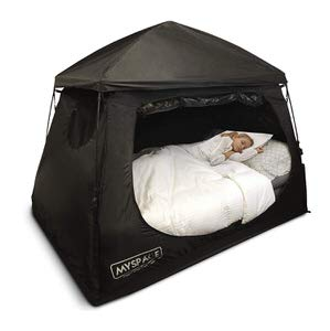 10. EasyGo Products EGP-BEDTENT-002 Space Indoor Dream Tent