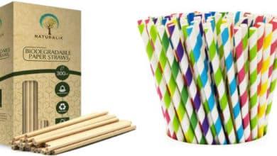 Best Paper Straws
