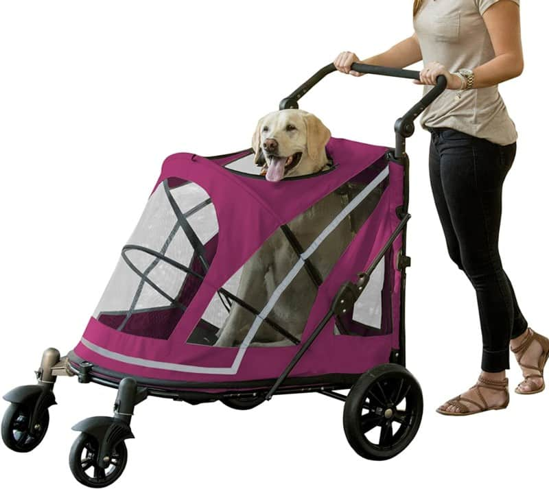 Pet Gear NO-Zip Dog Stroller