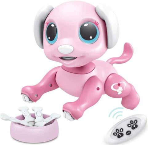 BIRANCO Smart Electronic Robot Dog Toy for Kids
