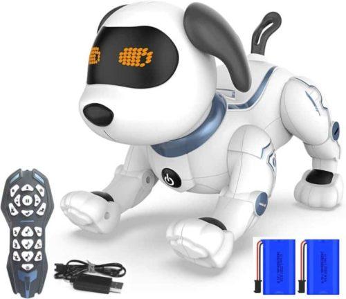 HBUDS Radio Control Stunt Programmable Robotic Pet for Kids