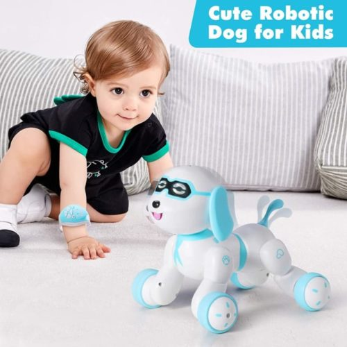 Hamdol Radio Control Smart Rc Robot Puppy for Kids with LED Eyes
