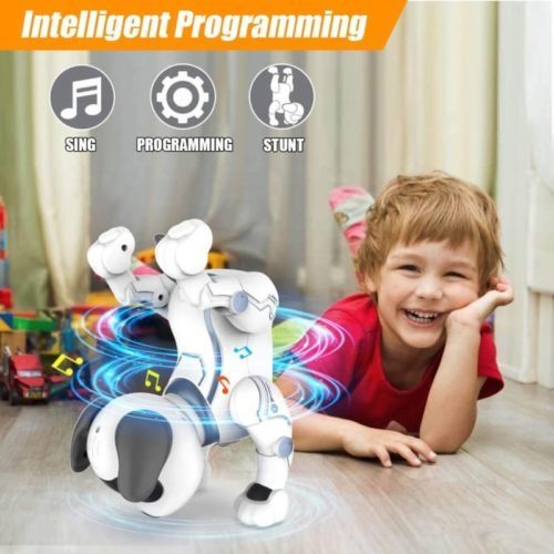 Okk Remote Control Electronic Pet Robot Dog Toy for Kids