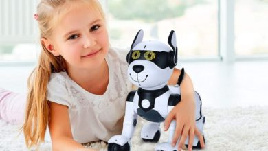 Robot Dog Toys for Kids