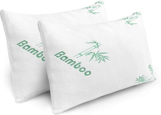 Bamboo Queen Pillow with Hypoallergenic Covers