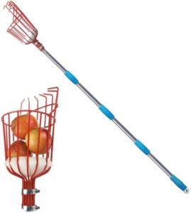 fruit picking tool